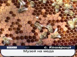 Музей на меда