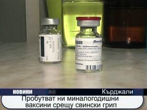 Пробутват миналогодишни ваксини против свински грип