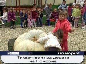Тиква гигант за децата на Поморие