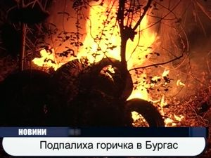 Подпалиха горичка в Бургас