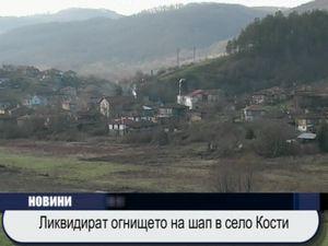 Ликвидират огнището на шап в село Кости