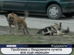 Проблемът с бездомните кучета все още не е решен