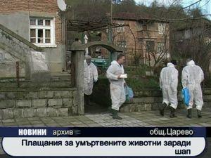 Плащания за умъртвените заради шапа животни