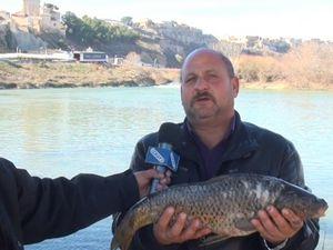 За риба на река Ебро