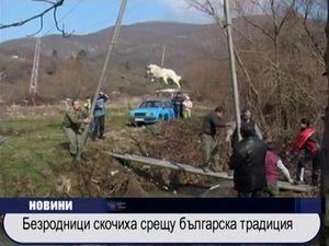 Безродници скочиха срещу българска традиция
