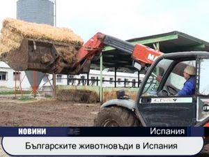 Българските животновъди в Испания