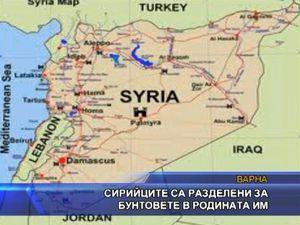 Сирийците са разделени за бунтовете в родината им