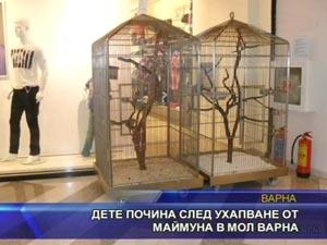 Дете почина след ухапване от маймуна в МОЛ Варна