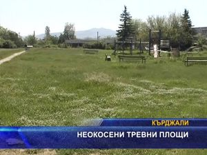 Неокосени тревни площи