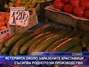 Истерията около заразените краставици съсипва родното производство