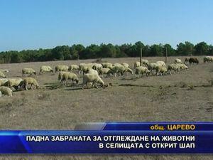 Падна забраната за отглеждане на животни в селищата с шап