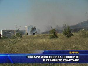 Пожари изпепелиха поляните в крайните квартали