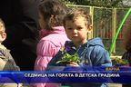 Седмица на гората в детска градина