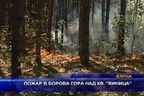 Пожар в борова гора над квартал
