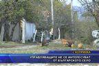 Управляващите не се интересуват от българското село