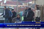 240 000 лева за необразованите цигани
