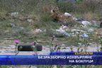 Безразборно изхвърляне на боклуци
