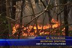 Трети ден гасят пожар в борова гора