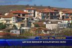 Цигани вилнеят в българско село