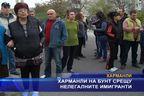 Харманли на бунт срещу нелегалните имигранти