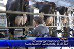 Производителите се готвят за падането на квотите за мляко