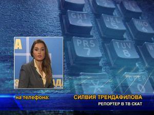 Сигнал до главния прокурор за изсичането на Борисовата градина