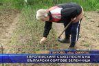Европейският съюз посяга на български сортове зеленчуци