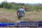 Павел Маринов обеща намеса за разгромените земеделски производители