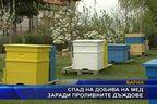Спад на добива на мед заради проливните дъждове