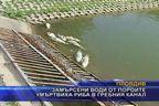 Замърсени води от пороите умъртвиха риба в гребния канал
