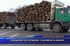 Обещания за справяне с дървената мафия