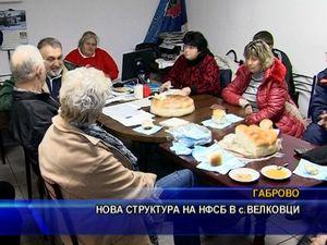Нова структура на НФСБ в с. Велковци