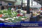 """Най-ощетеният сектор """"Зеленчукопроизводство"""" с повече пари догодина"""