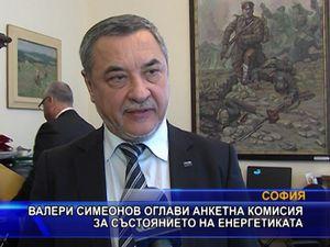 Симеонов оглави анкетна комисия за състоянието на енергетиката