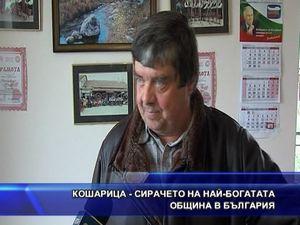Кошарица - сирачето на най-богатата община в България