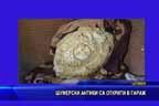 Шумерски антики са открити в гараж