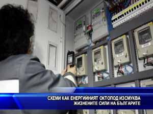 Схеми как енергийният октопод изсмуква жизнените сили на българите