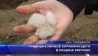 Градушка нанесе сериозни щети в община Кирково