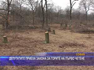 Депутатите приеха закона за горите на първо четене