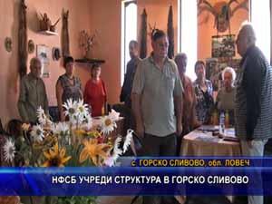НФСБ учреди структура в Горско Сливово