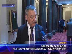 """Комисията за ревизия на сектор """"Енергетика""""  ще работи до края на юли"""
