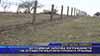 До седмици започва изграждането на ограда по българо-турската граница