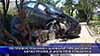 Неправоспособен шофьор предизвика катастрофа и излетя в градинка