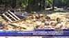 Нападнаха еколози снимащи поголовна сеч при строежа на новия зоокът