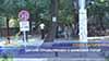 Цигани продължават с шумовия терор