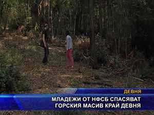 Младежи от НФСБ спасяват горския масив край Девня