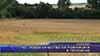 По-лошо качество на пшеницата в Поповско