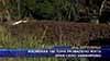Изсипаха 100 тона развалено жито край село Замфирово