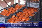 40 тона развалени плодове и зеленчуци на борсата, заради блокадата на границата