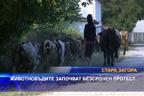 Животновъдите започват безсрочен протест